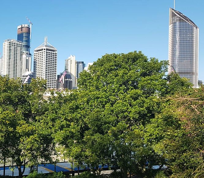 Brisbane Owners are Holding their Properties for an Average of 11 years